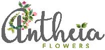 Antheia Flowers: Flowers